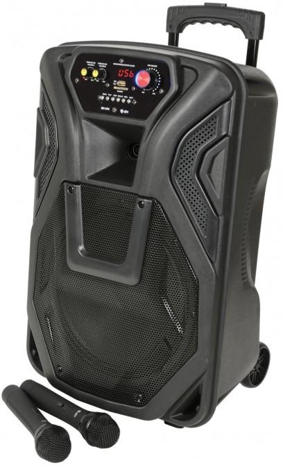 QTX Busker 12 - Portable PA