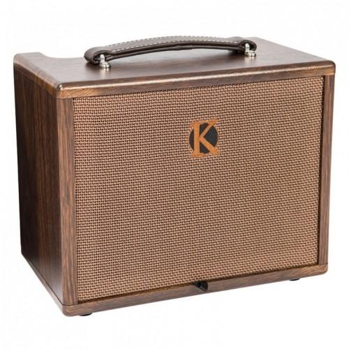 Kinsman KAA45 Acoustic Amplifier