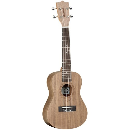 Tanglewood TWT-3